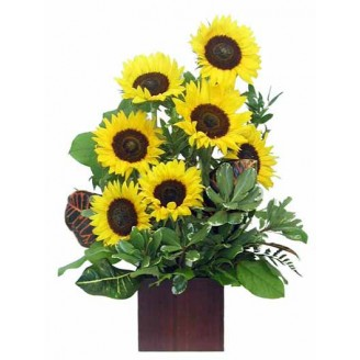 Golden Daylight Bouquet