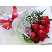 LONG STEM Dozen red roses