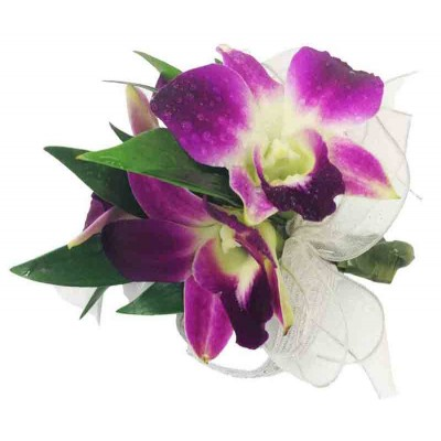 Glorious Orchid Boutonniere