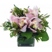 Cymbidium Bouquet